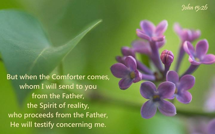 But when the Comforter comes, whom I will send to you from the Father, the Spirit of reality, who proceeds from the Father, He will testify concerning Me (John 15:16, Recovery Version).