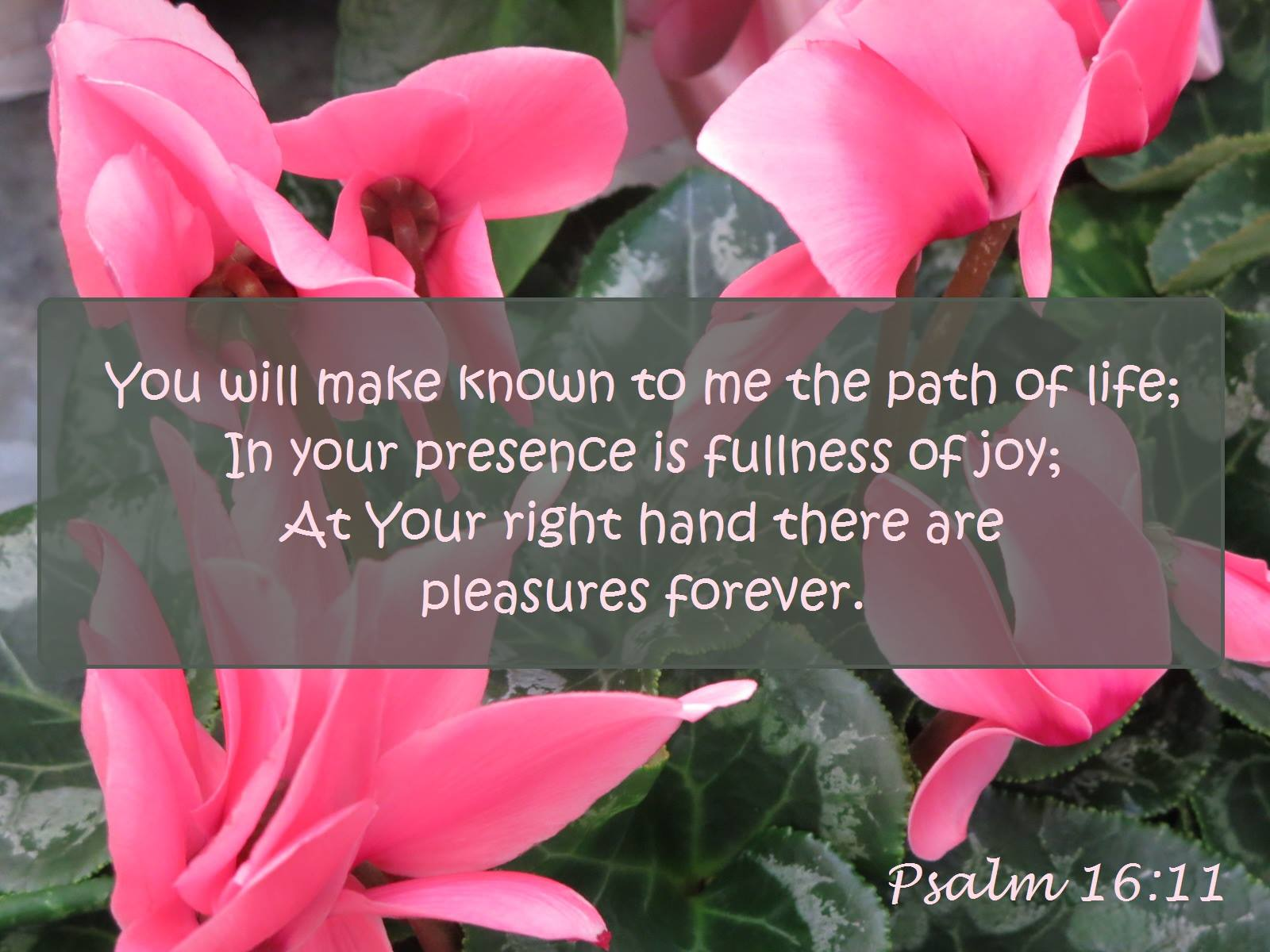 Psa. 16:11 You will make known to me the path of life; in Your presence is fullness of joy; at Your right hand there are pleasures forever.