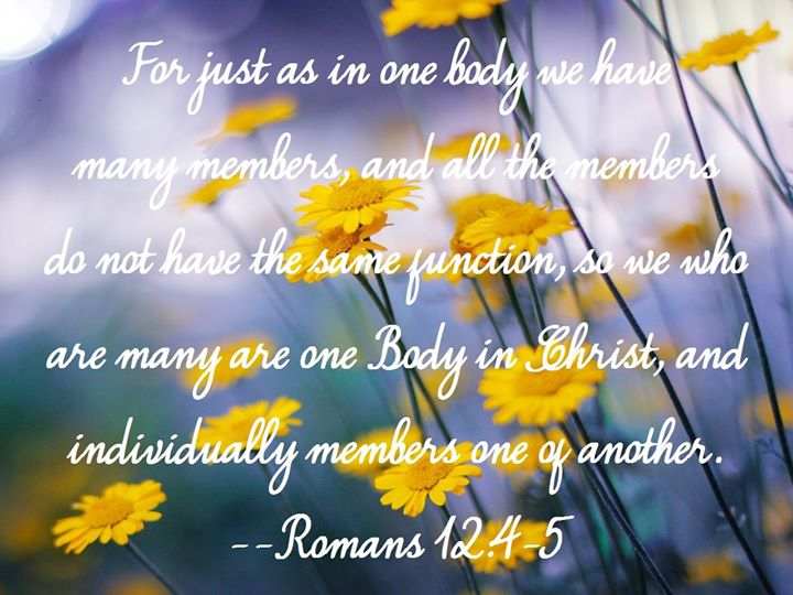 Romans 12:4-5 For just as in one body we have many members, and all the members do not have the same function, so we who are many are one Body in Christ, and individually members one of another.