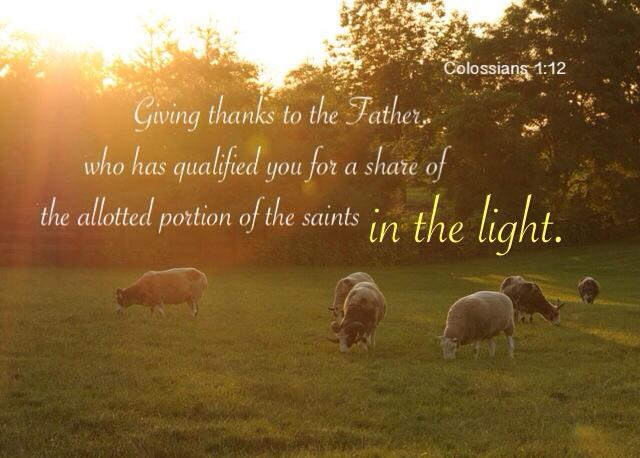 Colossians 1:12 Giving thanks to the Father, who has qualified you for a share of the allotted portion of the saints in the light