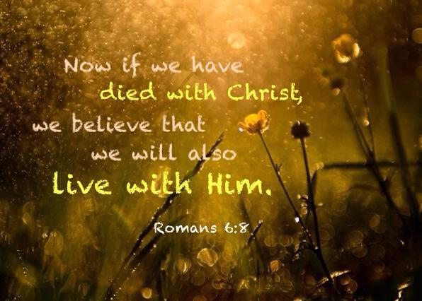 Romans 6:8 Now if we have died with Christ, we believe that we will also live with Him