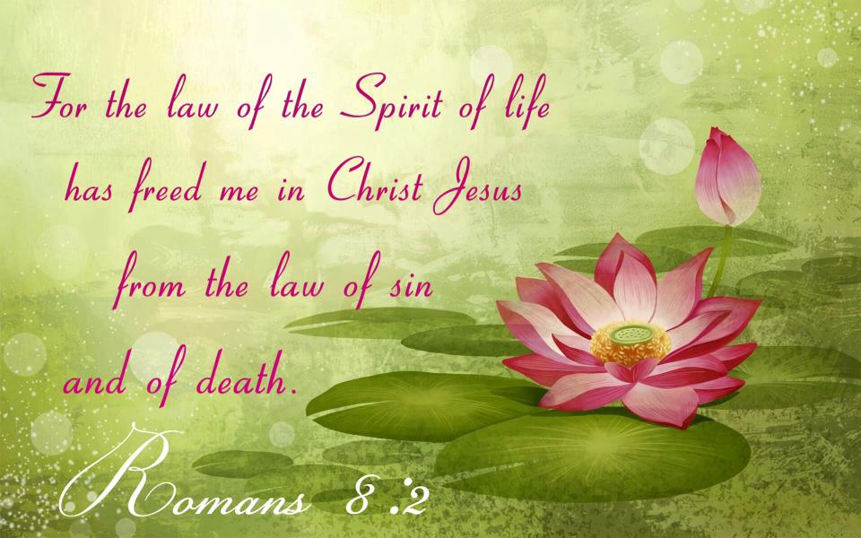 Romans 8:2 For the law of the Spirit of life has freed me in Christ Jesus from the law of sin and of death