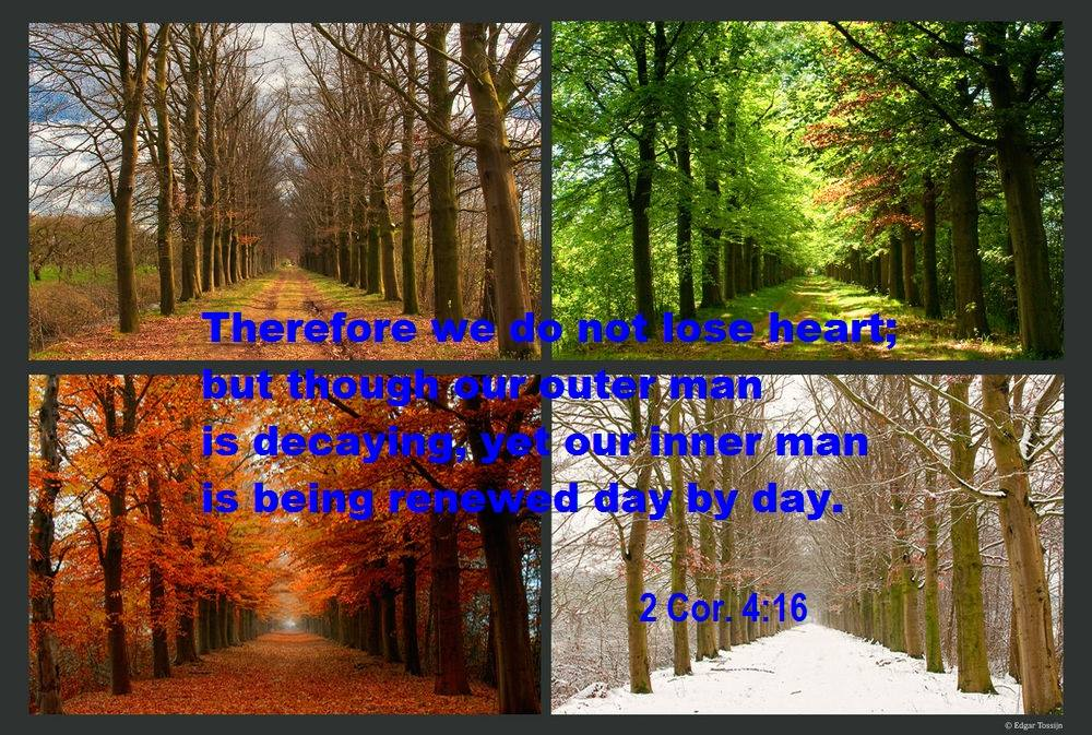 2 Corinthians 4:16 Therefore we do not lose heart, but though our outer man is decaying, our inner man is being renewed day by day