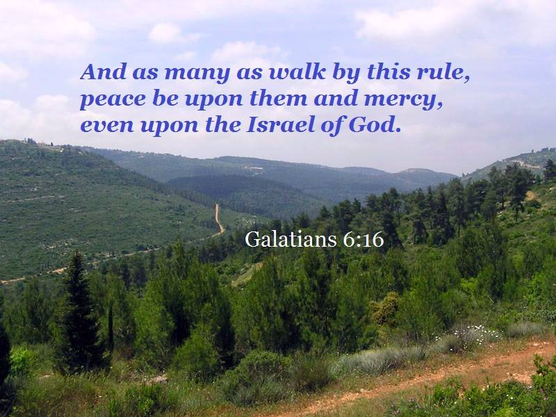 Galatians 6:16 But as many as walk by this rule, peace be upon them and mercy, even upon the Israel of God