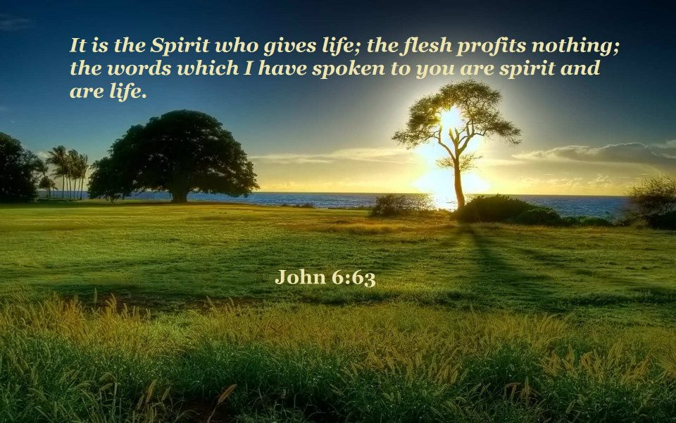 John 6:63 It is the Spirit who gives life, the flesh profits nothing; the words which I have spoken to you are spirit and are life