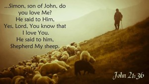 John 21:36 Simon, son of John, do you love Me? He said to Him, Yes, Lord, You know that I love You