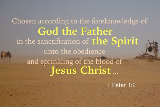 1 Peter 1:2 Chosen according to the foreknowledge of God the Father in the sanctification of the Spirit unto the obedience and sprinkling of the blood of Jesus Christ: Grace to you and peace be multiplied.