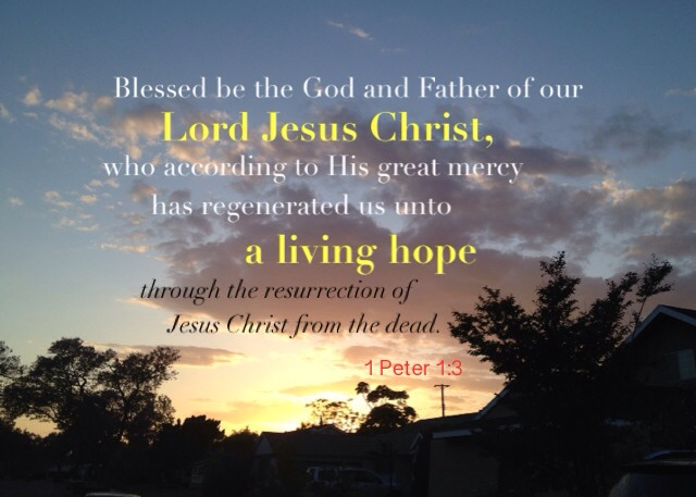 1 Peter 1:3 Blessed be the God and Father of our Lord Jesus Christ, who according to His great mercy has regenerated us unto a living hope through the resurrection of Jesus Christ from the dead.
