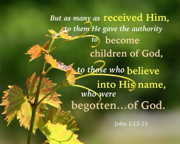 John 1:12-13 But as many as received Him, to them He gave the authority to become children of God, to those who believe into His name, Who were begotten not of blood, nor of the will of the flesh, nor of the will of man, but of God.