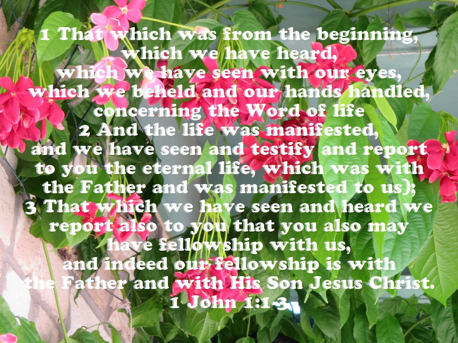 1 John 1:1-3 That which was from the beginning, which we have heard, which we have seen with our eyes, which we beheld and our hands handled, concerning the Word of life, (And the life was manifested, and we have seen and testify and report to you the eternal life, which was with the Father and was manifested to us); That which we have seen and heard we report also to you that you also may have fellowship with us, and indeed our fellowship is with the Father and with His Son Jesus Christ.