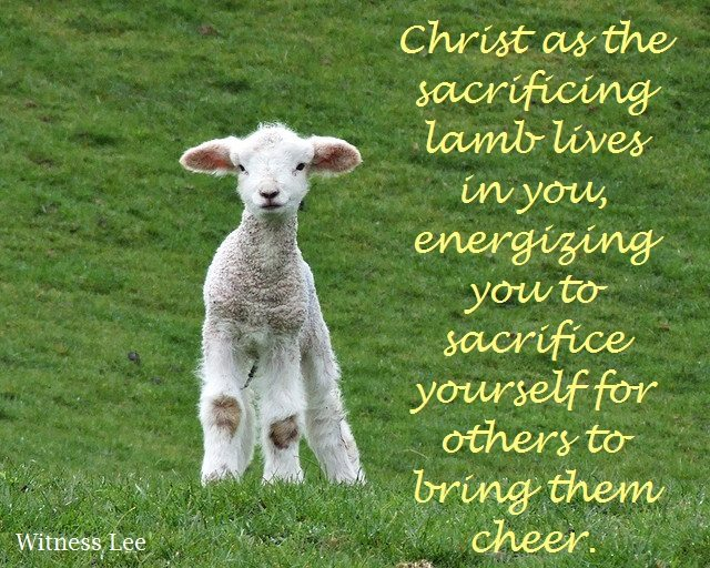 Christ as the sacrificing lamb lives in you, energizing you to sacrifice yourself for others to bring them cheer