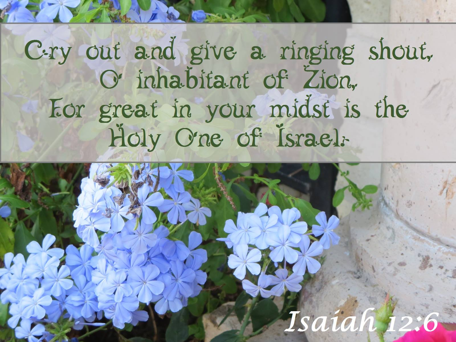Isaiah 12:6 Cry out and give a ringing shout, O inhabitant of Zion, For great in your midst is the Holy One of Israel.