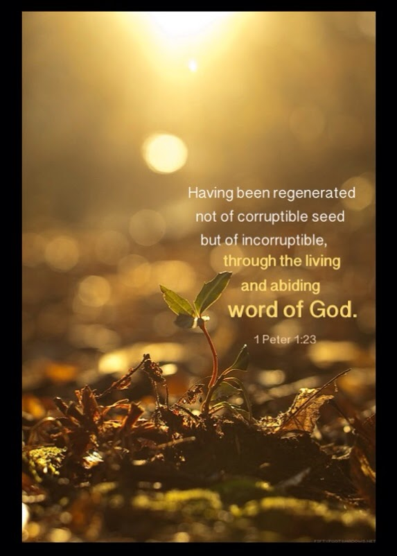1 Pet. 1:23 Having been regenerated not of corruptible seed but of incorruptible, through the living and abiding word of God.