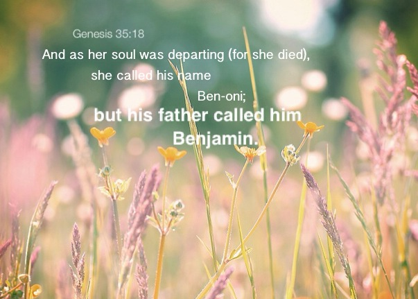 Genesis 35:18 And as her soul was departing (for she died), she called his name Ben-oni; but his father called him Benjamin.