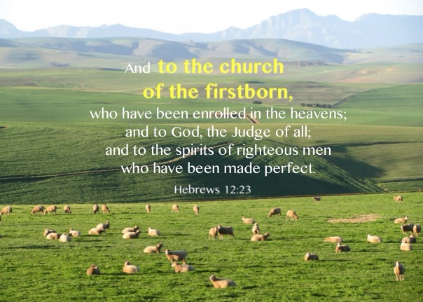Hebrews 12:23 And to the church of the firstborn, who have been enrolled in the heavens; and to God, the Judge of all; and to the spirits of righteous men who have been made perfect;