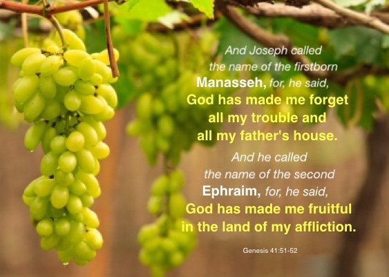 Genesis 41:51-52 And Joseph called the name of the firstborn Manasseh, for, he said, God has made me forget all my trouble and all my father's house. And he called the name of the second Ephraim, for, he said, God has made me fruitful in the land of my affliction.