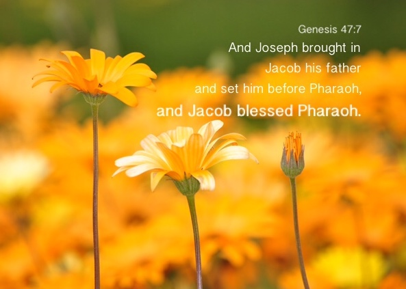 Genesis 47:7 And Joseph brought in Jacob his father and set him before Pharaoh, and Jacob blessed Pharaoh.