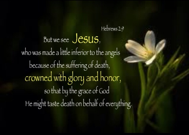 Hebrews 2:9 But we see Jesus, who was made a little inferior to the angels because of the suffering of death, crowned with glory and honor, so that by the grace of God He might taste death on behalf of everything.