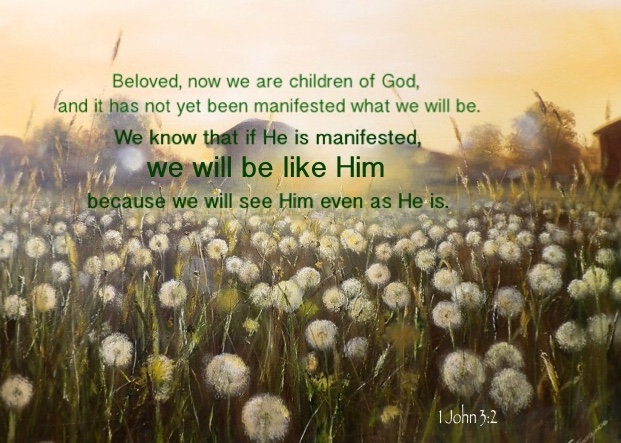 1 John 3:2 Beloved, now we are children of God, and it has not yet been manifested what we will be. We know that if He is manifested, we will be like Him because we will see Him even as He is.