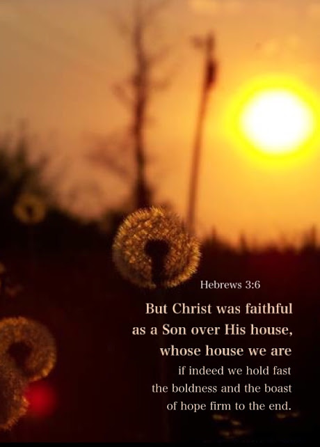 Hebrews 3:6 But Christ was faithful as a Son over His house, whose house we are if indeed we hold fast the boldness and the boast of hope firm to the end.