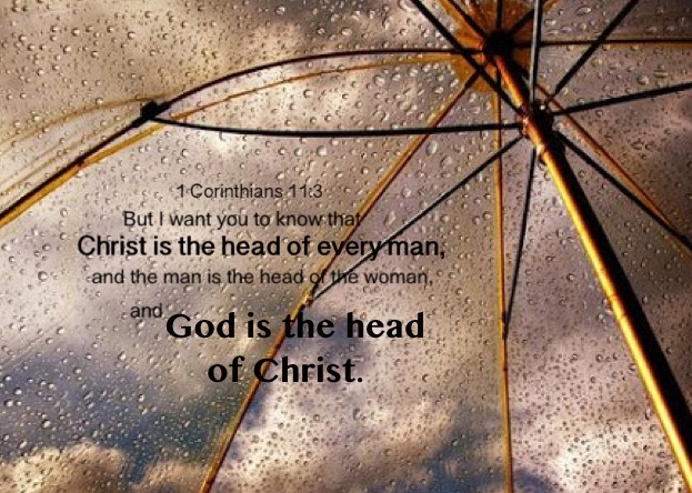 1 Corinthians 11:3 But I want you to know that Christ is the head of every man, and the man is the head of the woman, and God is the head of Christ.