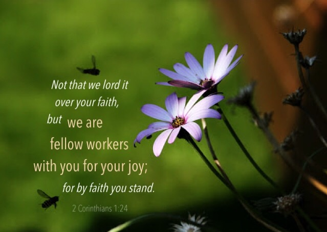 2 Corinthians 1:24 Not that we lord it over your faith, but we are fellow workers with you for your joy; for by faith you stand.
