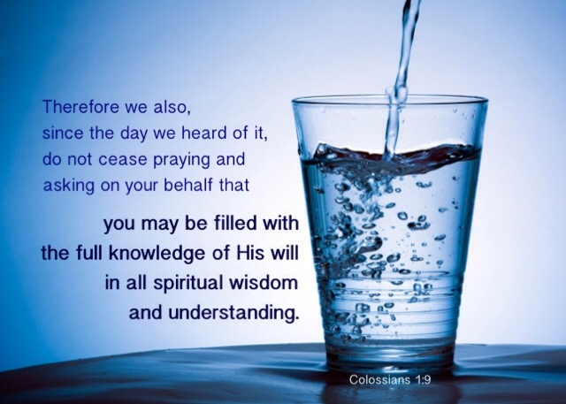 Colossians 1:9 Therefore we also, since the day we heard of it, do not cease praying and asking on your behalf that you may be filled with the full knowledge of His will in all spiritual wisdom and understanding.
