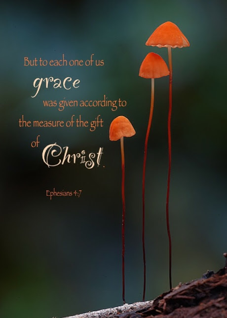 Ephesians 4:7 But to each one of us grace was given according to the measure of the gift of Christ.