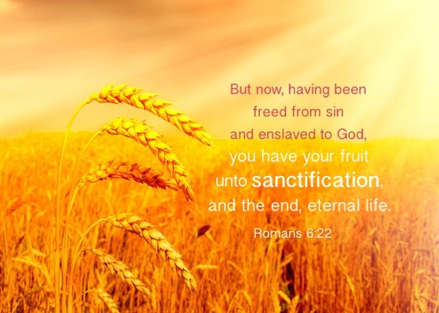 Rom. 6:22 But now, having been freed from sin and enslaved to God, you have your fruit unto sanctification, and the end, eternal life.
