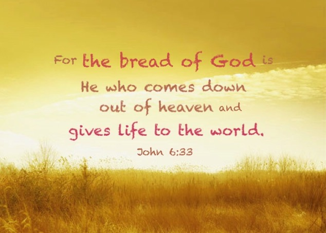 John 6:33 For the bread of God is He who comes down out of heaven and gives life to the world.