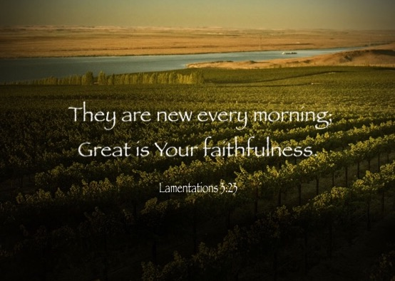 Lamentations 3:23 They are new every morning; Great is Your faithfulness.