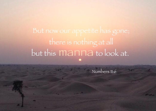 Numbers 11:6 But now our appetite has gone; there is nothing at all but this manna to look at.