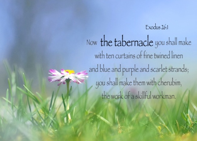 Exodus 26:1 Now the tabernacle you shall make with ten curtains of fine twined linen and blue and purple and scarlet strands; you shall make them with cherubim, the work of a skillful workman.