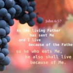 As the living Father has sent Me and I live because of the Father, so he who 1eats Me, he also shall alive because of Me.