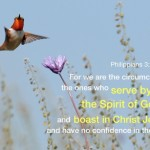 Philippians 3:3 For we are the circumcision, the ones who serve by the Spirit of God and boast in Christ Jesus and have no confidence in the flesh.