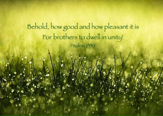 Psalms 133:1 Behold, how good and how pleasant it is For brothers to dwell in unity!