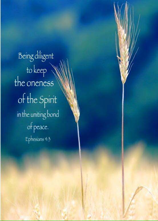 Ephesians 4:3 Being diligent to keep the oneness of the Spirit in the uniting bond of peace.