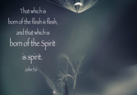 John 3:6 That which is born of the flesh is flesh, and that which is born of the Spirit is spirit