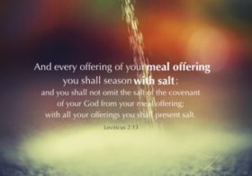 Lev. 2:13 And every offering of your meal offering you shall season with salt, and you shall not omit the salt of the covenant of your God from your meal offering