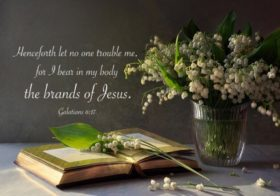 Gal. 6:17 Henceforth let no one trouble me, for I bear in my body the brands of Jesus