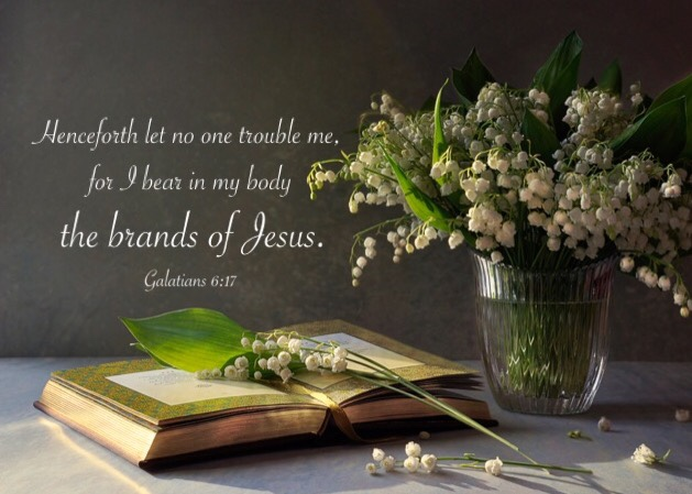 Gal. 6:17 Henceforth let no one trouble me, for I bear in my body the brands of Jesus.