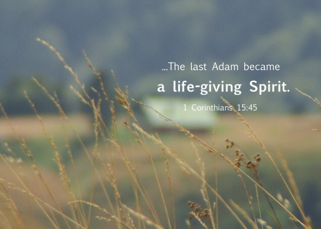 "1 Cor. 15:45 So also it is written, ""The first man, Adam, became a living soul""; the last Adam became a life-giving Spirit."