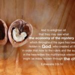 Eph. 3:9-10 And to enlighten all that they may see what the economy of the mystery is, which throughout the ages has been hidden in God, who created all things, in order that now to the rulers and the authorities in the heavenlies the multifarious wisdom of God might be made known through the church.