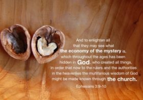 Eph. 3:9-10 And to enlighten all that they may see what the economy of the mystery is…