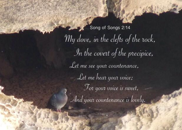 My dove, in the clefts of the rock, In the covert of the ...